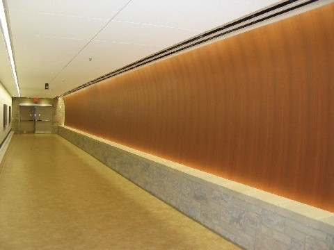 Photo for Spectrum Health Tunnel