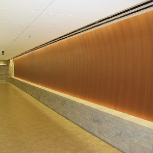 Spectrum Health Tunnel