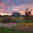 Photo for The Frederik Meijer Gardens Conservatory