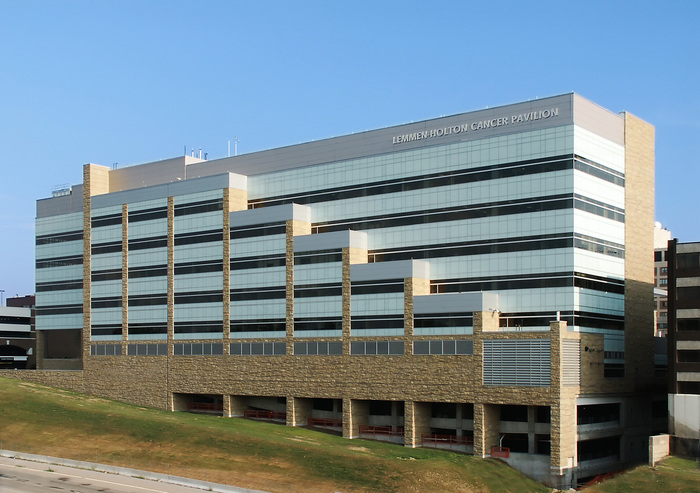 Lemmen holton cancer center